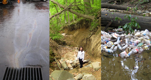 How Stormwater Harms District Waterbodies